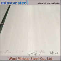 Hot Rolled 304 Stainless Steel Sheet 5mm 6mm 8mm Thick for Making Tank